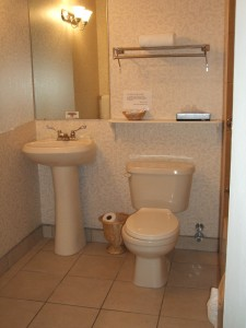 Wheelchair Accessible Room Bathroom